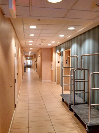 Residence Inn Boston Framingham : Clean and well light hallways