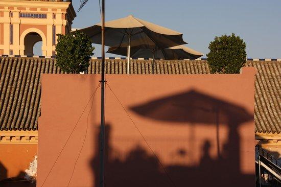 Hotel Amadeus: la terrasse vue de la Giralda