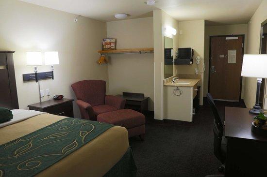 Oak Tree Inn: Guest Room