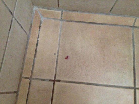 Hotel Colonial: Sangre en el baño