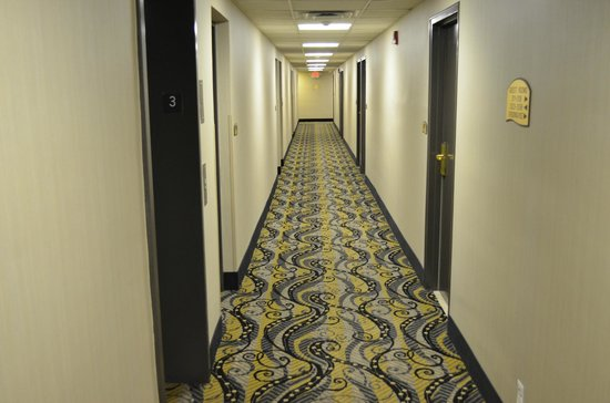 Detroit Regency Hotel: Hallway