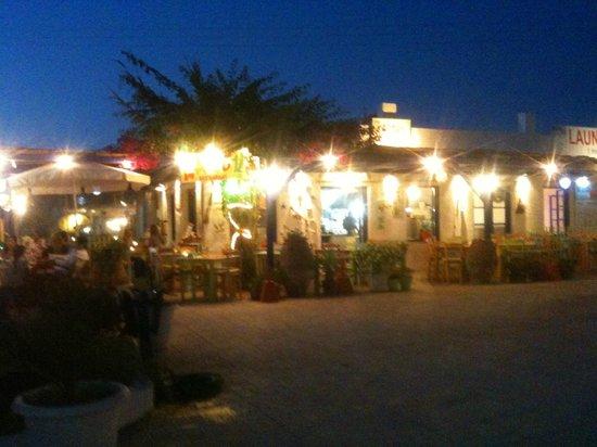 Cactus Restaurant : cactus by night