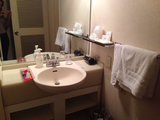 International Hotel Nagoya : Small but good basin area