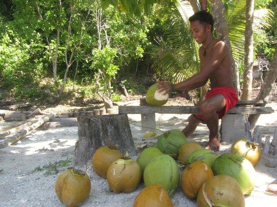 Sifa Cottage - Waleakodi : Fresh coconut