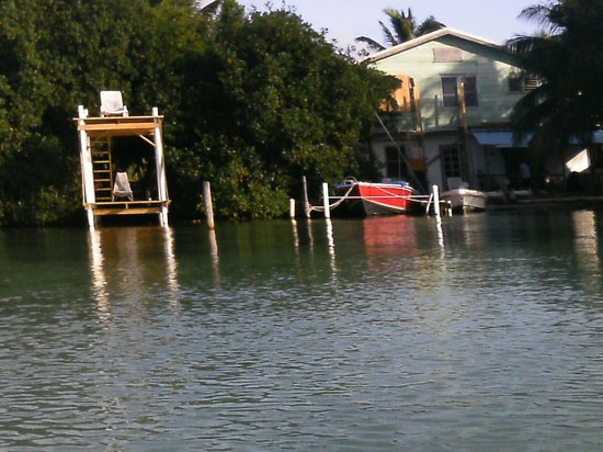 PAUSE Hostel: View from kayak of grounds