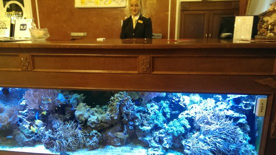 Hotel General : Réception