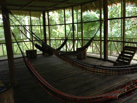 Otorongo Expeditions Jungle Lodge: Hammock Room at the lodge
