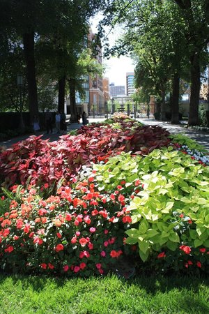 Temple Square : View of garden toward South Temple Street