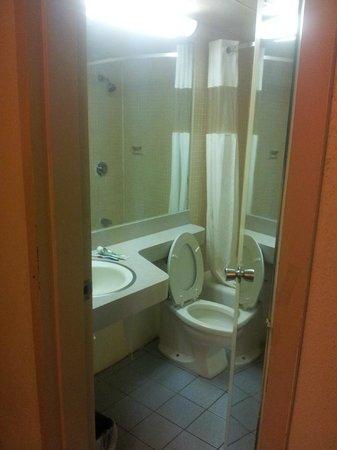 Americas Best Value Inn : Bathroom 1
