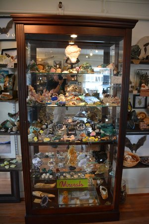 The Rock & Art Shop: One of the display cases