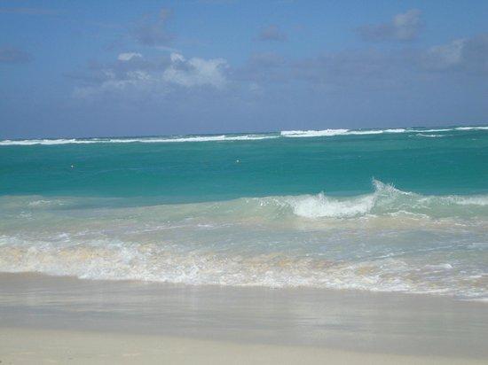 Grand Bahia Principe Bavaro : Атлантика)