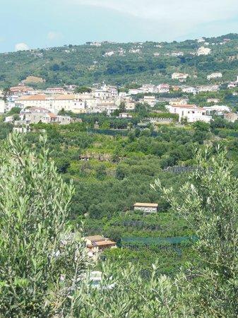 Agriturismo La Lobra: unterhalb vom Dorf liegt der Zitronenhain/La Lobra