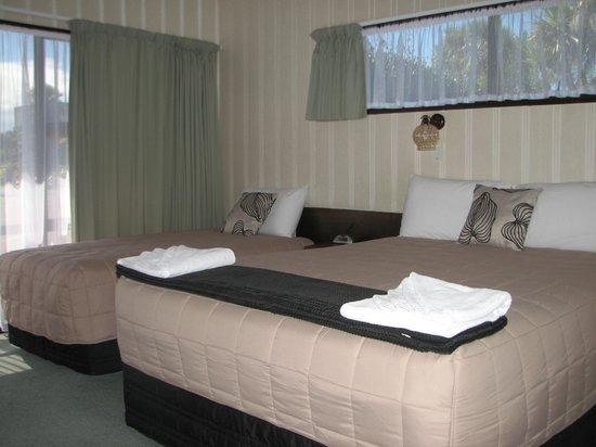 Cobblestone Court Motel : Standard Studio