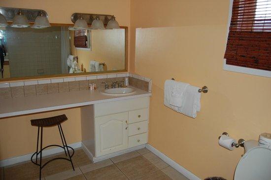 Douglas House: Bathroom