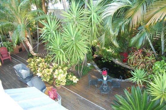 Douglas House : Common garden area