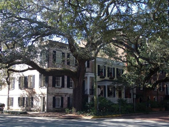 Savannah Historic District: Typical street in Historic District
