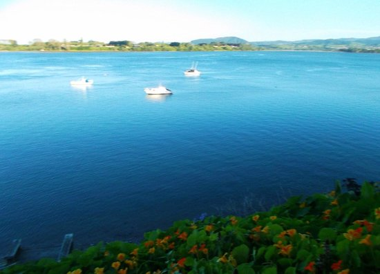 The Tauranga on the Waterfront Motel : view from the top of the pathway down to the water