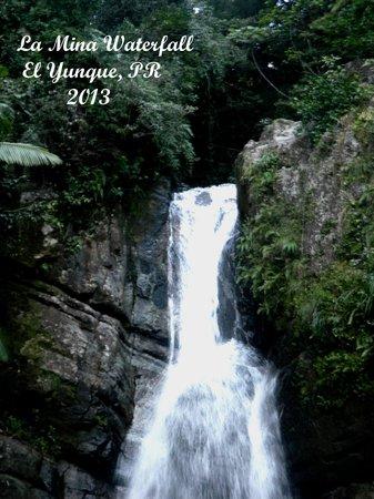 La Mina Falls: La Mina