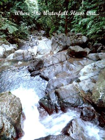 La Mina Falls: Waterfall flowing out