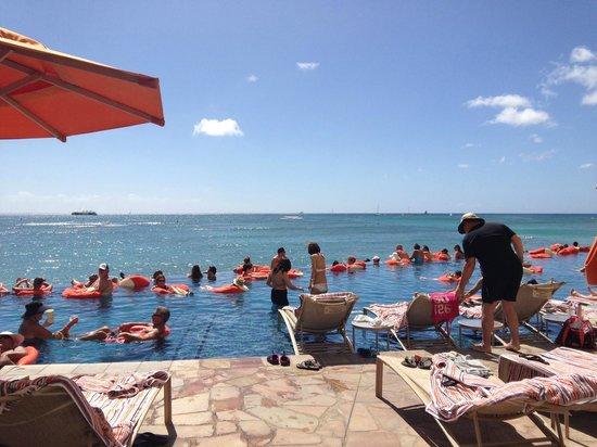 Sheraton Waikiki: Infinity pool area