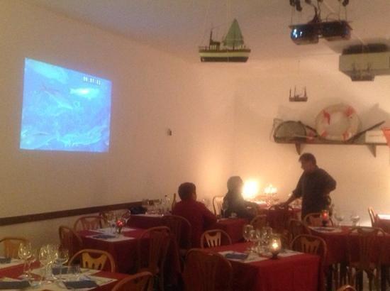 Calma Piatta: acquario a parete