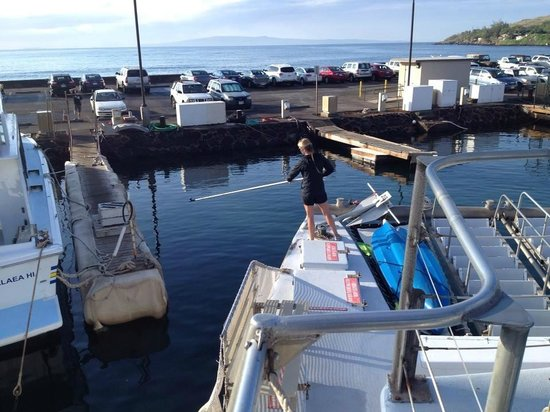 Pacific Whale Foundation: Returning to dock
