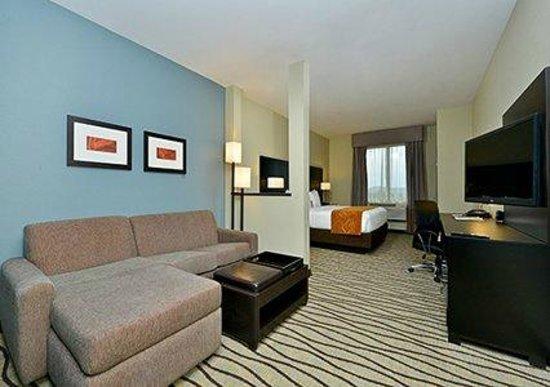 Comfort Suites Houston West Beltway 8: King suite with sitting area