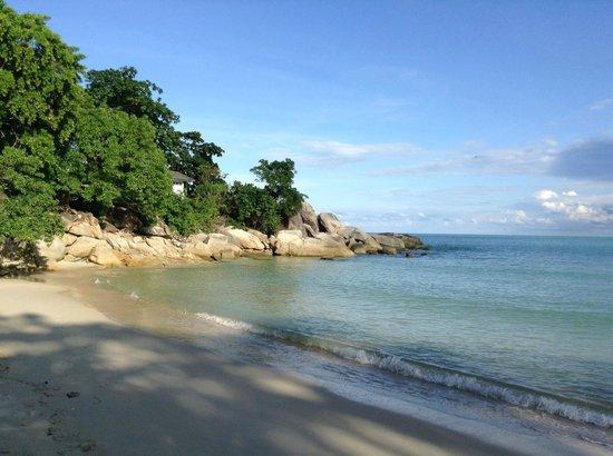 Buri Rasa Koh Phangan: Strandende zur Linken