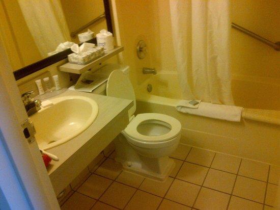 Travelodge Edmonton West: clean bathroom