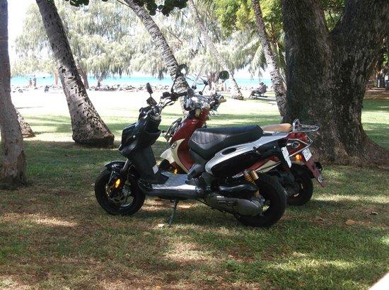Maui Moped Tours