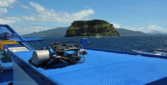 Fishermen's Cove : Zona d'immersioni