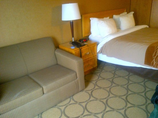 Comfort Inn Edmonton West: room had a couch