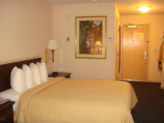 Quality Inn & Suites -- South San Francisco: Room_2