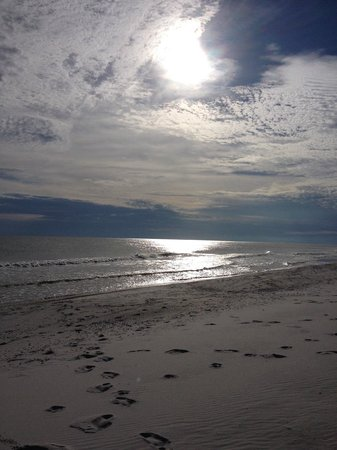 Gulf State Park : WOW