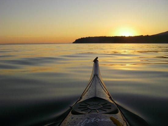 Sunshine Kayaking & Sailing Ltd - Day Tours: Kayaking at Sunset