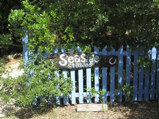 Seaside Stables Anguilla: Stables entrance gate from main road