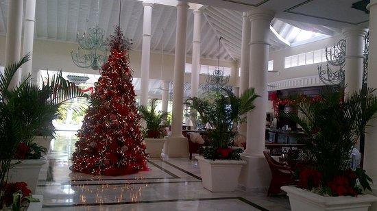 Luxury Bahia Principe Ambar Don Pablo Collection: Xmas tree in lobby