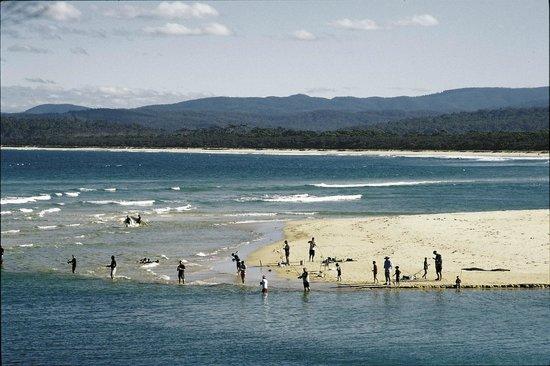 Apollo Luxury Apartments: Fishing on the main beach