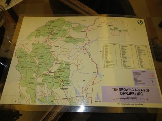 Golden Tips Tea Cosy : Map of Darjeeling tea estates