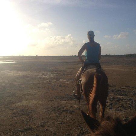 Horse Ranch Bonaire: #4