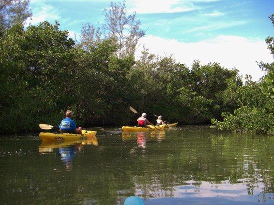 Turtle Mound National Historic Site Kayaking Paradise