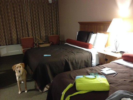 Best Western Plus Saddleback Inn & Conference Center: Huge room!