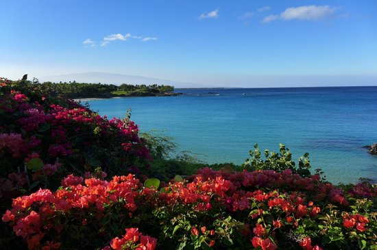 Mauna Kea Beach Hotel, Autograph Collection: View from one of the restaurants, walkways