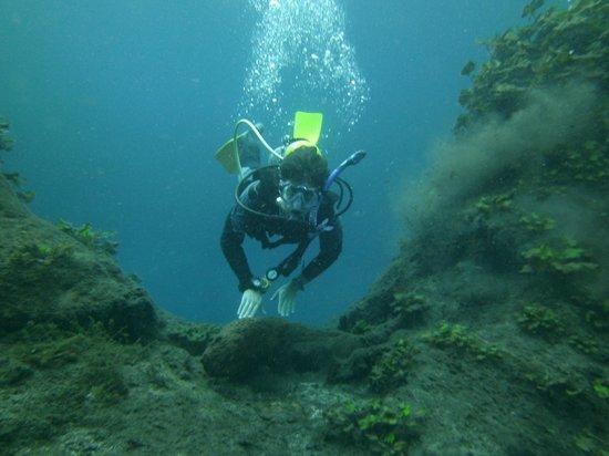 Media Luna School of Diving : Media Luna