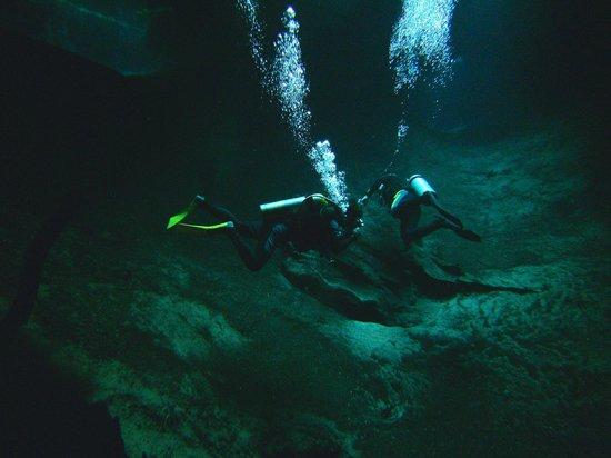 Media Luna School of Diving : Caverna