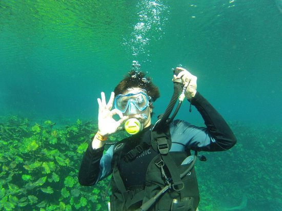 Media Luna School of Diving : Todo bien