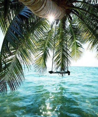 Cabinas Sax's Caribe : playa  cercana