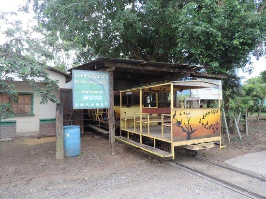 The Lodge and Spa at Pico Bonito: The train to the Cuero y Salado Refuge