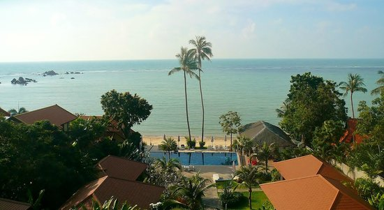 Palm Coco Mantra: Room With A View