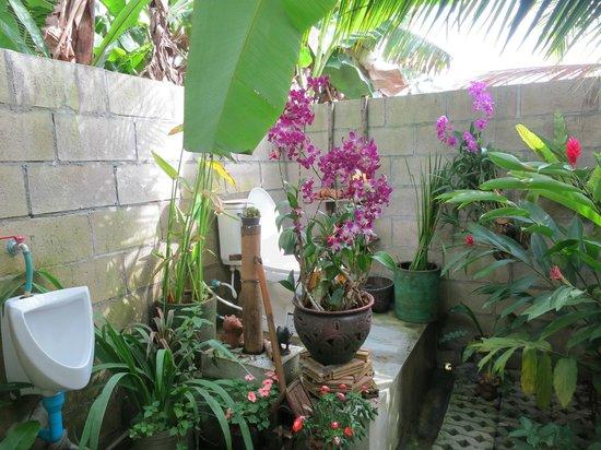 Sammy's Organic Thai Cooking School: Les fameuses toilettes